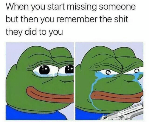 Shit, Did, and Remember: When you start missing someone  but then you remember the shit  they did to you