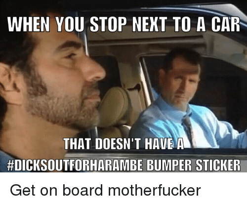 Board, Car, and You: WHEN YOU STOP NEKT TO A CAR  THAT DOESN'T HAVEA  #DICKSOUTFORHARAMBE BUMPER STICKER <p>Get on board motherfucker</p>