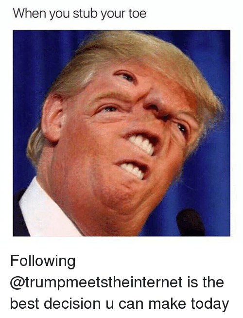 Memes, Best, and Today: When you stub your toe Following @trumpmeetstheinternet is the best decision u can make today