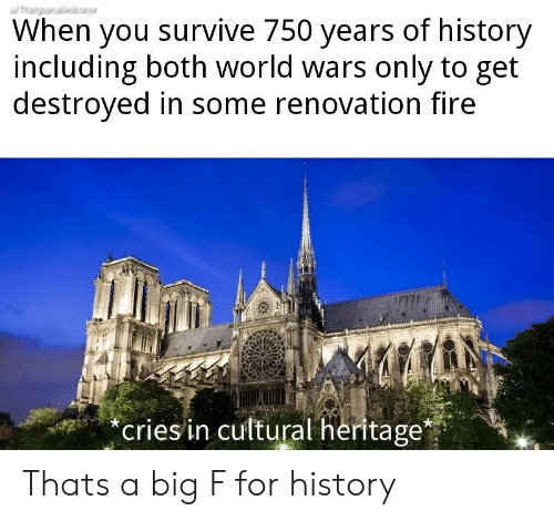 Fire, History, and World: When you survive 750 years of history  including both world wars only to get  destroyed in some renovation fire  eriesin cultural heritage* Thats a big F for history
