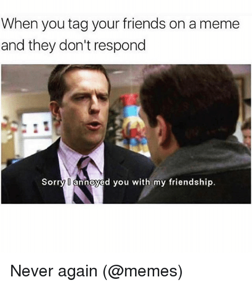 Memed: When you tag your friends on a meme  and they don't respond  Sorry annoyed you with my friendship. Never again (@memes)