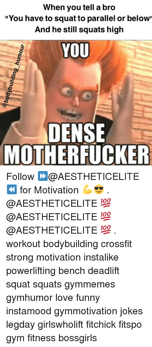 "Dense Motherfucker: When you tell a bro  ""You have to squat to parallel or below  And he still squats high  YOU  DENSE  MOTHERFUCKER Follow ⏩@AESTHETICELITE ⏪ for Motivation 💪😎 . @AESTHETICELITE 💯 @AESTHETICELITE 💯 @AESTHETICELITE 💯 . workout bodybuilding crossfit strong motivation instalike powerlifting bench deadlift squat squats gymmemes gymhumor love funny instamood gymmotivation jokes legday girlswholift fitchick fitspo gym fitness bossgirls"