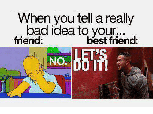 Bad, Best Friend, and Memes: When you tell a really  bad idea to your.d  friend:  best friend:  NO.0