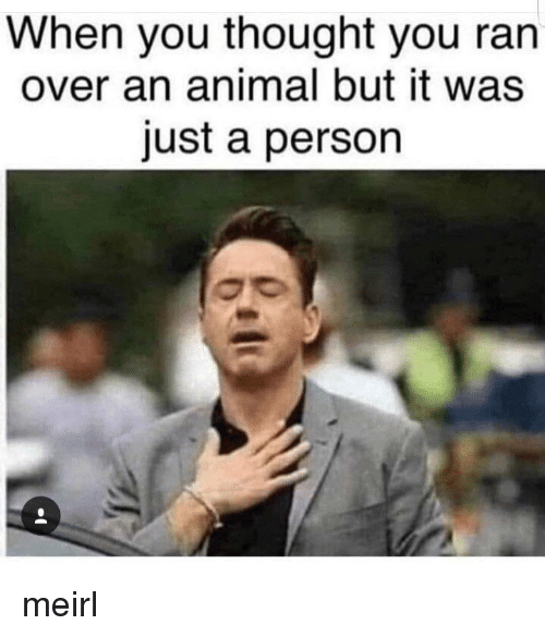 Animal, Thought, and MeIRL: When you thought you ran  over an animal but it was  just a person meirl