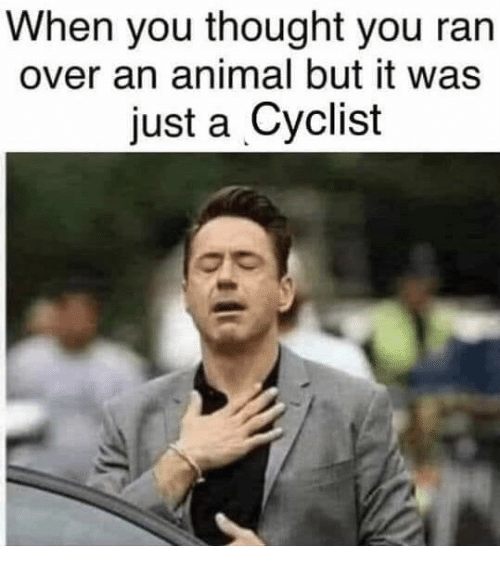 Animal, Thought, and You: When you thought you ran  over an animal but it was  just a Cyclist