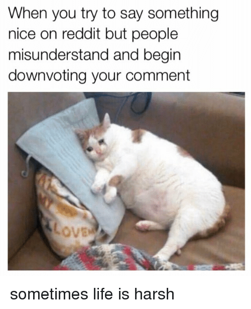 misunderstand: When you try to say something  nice on reddit but people  misunderstand and begin  downvoting your comment  ovE sometimes life is harsh
