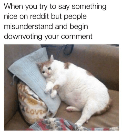 misunderstand: When you try to say something  nice on reddit but people  misunderstand and begin  downvoting your comment  ove