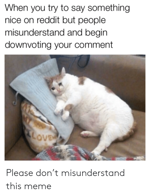 misunderstand: When you try to say something  nice on reddit but people  misunderstand and begin  downvoting your comment Please don't misunderstand this meme