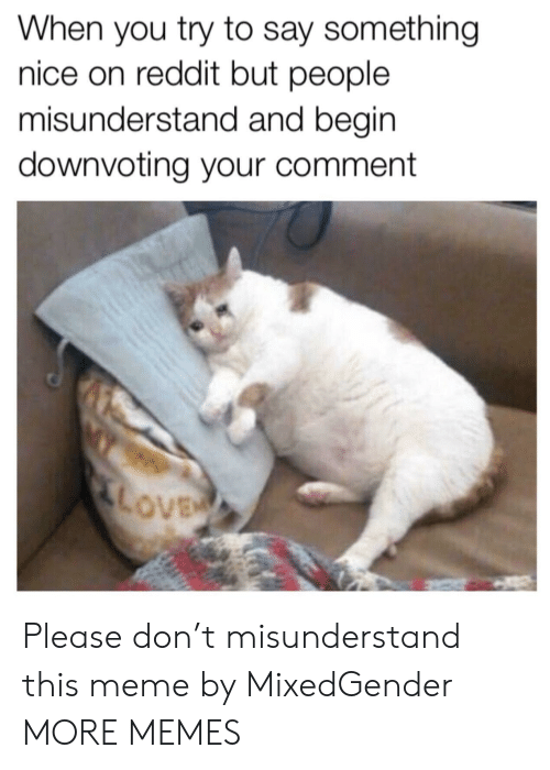 misunderstand: When you try to say something  nice on reddit but people  misunderstand and begin  downvoting your comment Please don't misunderstand this meme by MixedGender MORE MEMES