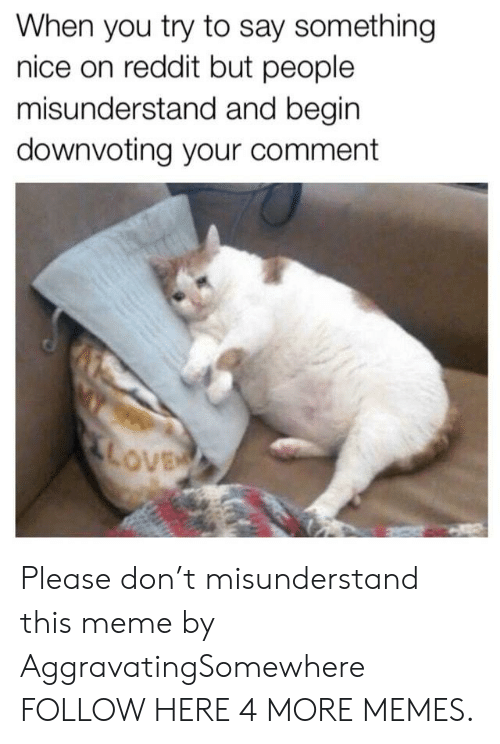 misunderstand: When you try to say something  nice on reddit but people  misunderstand and begin  downvoting your comment  ove Please don't misunderstand this meme by AggravatingSomewhere FOLLOW HERE 4 MORE MEMES.