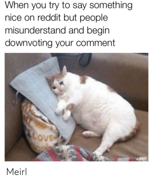misunderstand: When you try to say something  nice on reddit but people  misunderstand and begin  downvoting your comment  LOVE Meirl