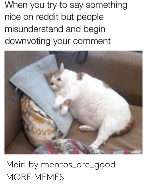 misunderstand: When you try to say something  nice on reddit but people  misunderstand and begin  downvoting your comment  LOVE Meirl by mentos_are_good MORE MEMES