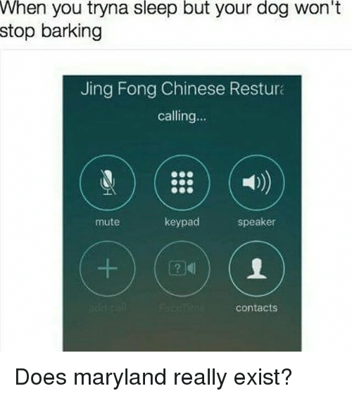 Memes, Mute, and Chinese: When you tryna sleep but your dog won't  stop barking  Jing Fong Chinese Restura  calling  keypad  speaker  mute  contacts Does maryland really exist?