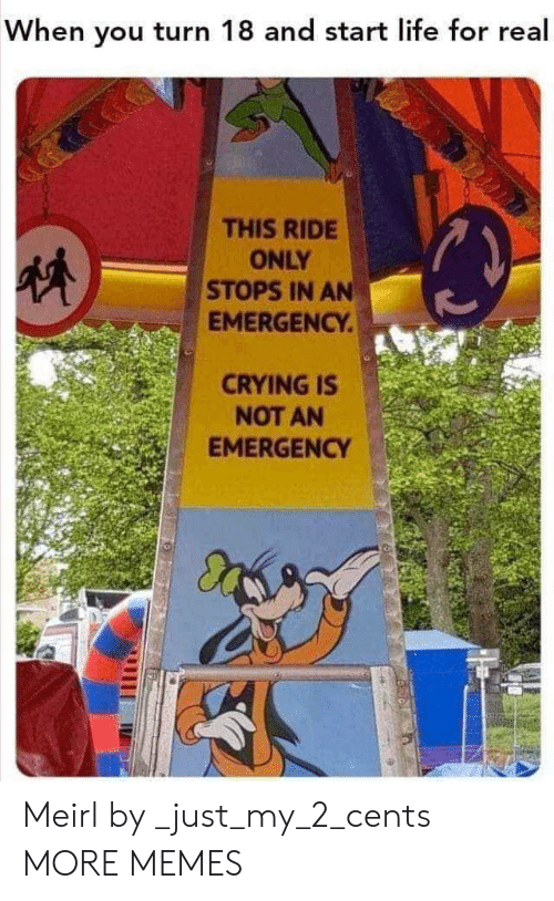 Crying, Dank, and Life: When you turn 18 and start life for real  THIS RIDE  ONLY  STOPS IN AN  EMERGENCY.  CRYING IS  NOT AN  EMERGENCY Meirl by _just_my_2_cents MORE MEMES