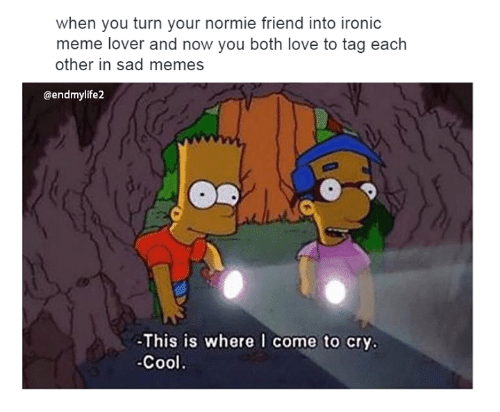 Crying, Friends, and Ironic: when you turn your normie friend into ironic  meme lover and now you both love to tag each  other in sad memes  @endmylife2  This is where I come to cry.  Cool