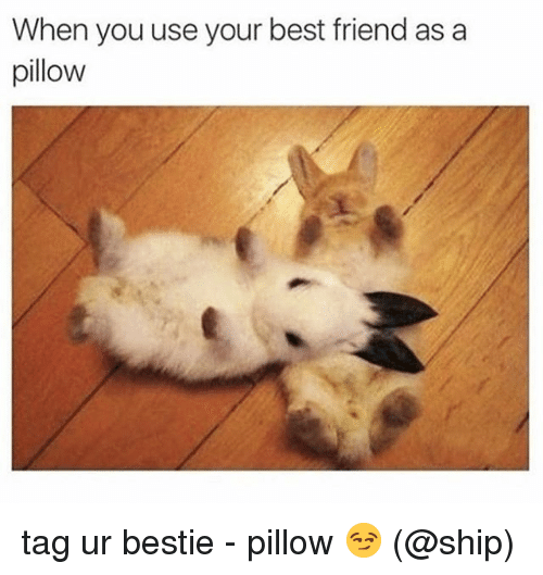 Best Friend, Memes, and Best: When you use your best friend as a  pillow tag ur bestie - pillow 😏 (@ship)