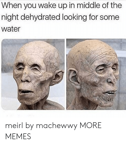 Dank, Memes, and Target: When you wake up in middle of the  night dehydrated looking for some  water meirl by machewwy MORE MEMES