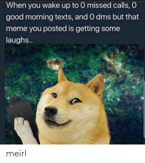 Doge, Meme, and Good Morning: When you wake up to 0 missed calls, O  good morning texts, and 0 dms but that  meme you posted is getting some  laughs..  @YourFriend Doge meirl