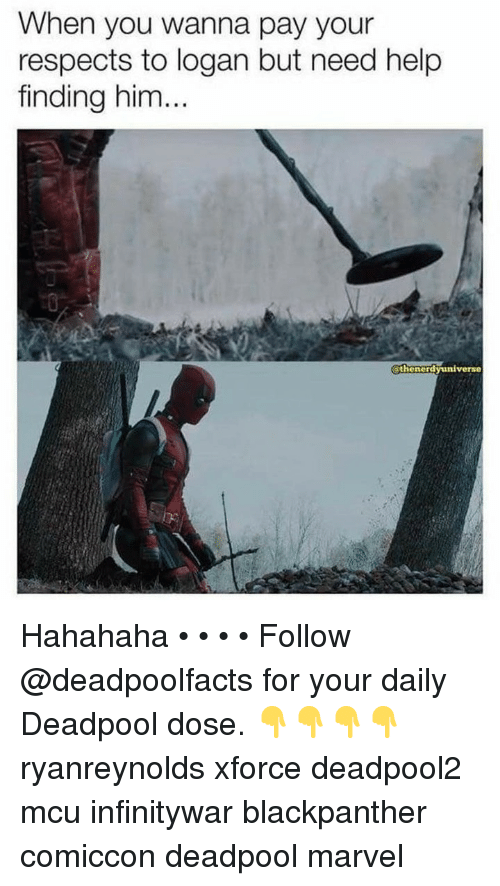 Memes, Deadpool, and Help: When you wanna pay your  respects to logan but need help  finding him...  0  thenordyuniverse Hahahaha • • • • Follow @deadpoolfacts for your daily Deadpool dose. 👇👇👇👇 ryanreynolds xforce deadpool2 mcu infinitywar blackpanther comiccon deadpool marvel