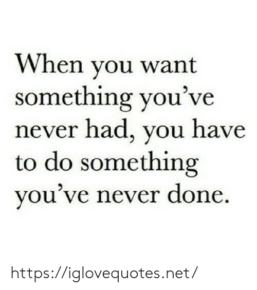 Never, Net, and You: When you want  something you've  never had, you have  to do something  you've never done https://iglovequotes.net/