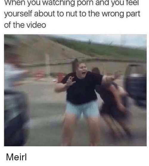 Porn, Video, and MeIRL: When you watching porn and you feel  yourself about to nut to the wrong part  of the video Meirl