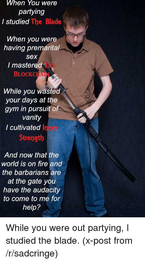 Studying The Blade: When You were  partying  I studied  The Blade  When you were  having premarital  Sex  I mastered  BLOCK CHAI  While you wasted  your days at the  gym in pursuit of  vanity  I cultivated  Strength  And now that the  world is on fire and  the barbarians are  at the gate you  have the audacity  to come to me for  help? While you were out partying, I studied the blade. (x-post from /r/sadcringe)