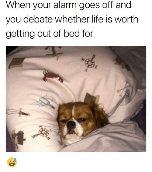 Life, Memes, and Alarm: When your alarm goes off and  you debate whether life is worth  getting out of bed for  ㄋ  多 😅
