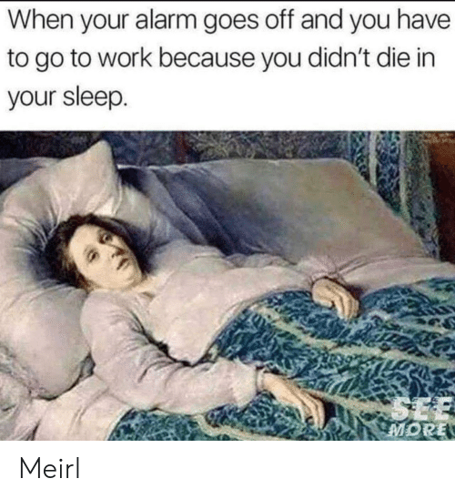 Work, Alarm, and Sleep: When your alarm goes off and you have  to go to work because you didn't die in  your sleep.  SEE  MORE Meirl