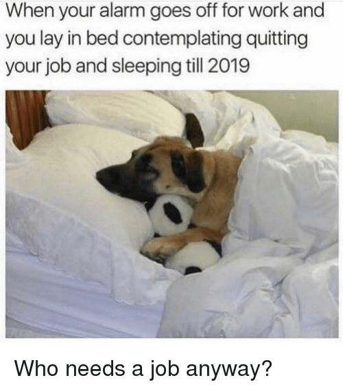Lay In Bed: When your alarm goes off for work and  you lay in bed contemplating quitting  your job and sleeping till 2019 Who needs a job anyway?
