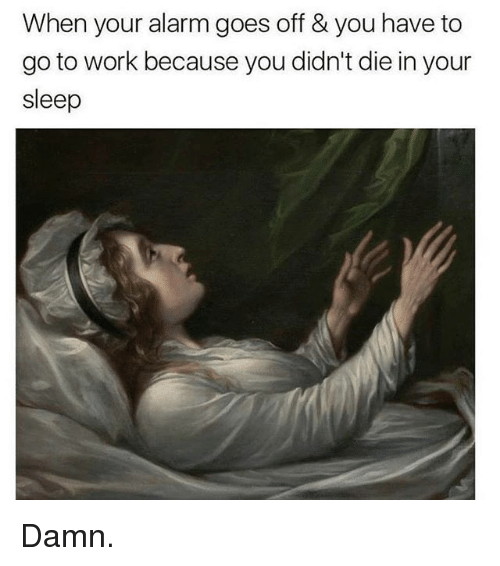 Memes, Work, and Alarm: When your alarm goes off & you have to  go to work because you didn't die in your  sleep Damn.