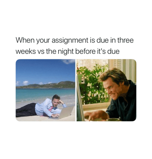 Three, Assignment, and The Night Before: When your assignment is due in three  weeks vs the night before it's due