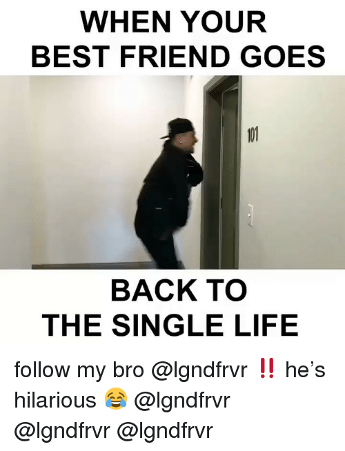 Best Friend, Life, and Memes: WHEN YOUR  BEST FRIEND GOES  BACK TO  THE SINGLE LIFE follow my bro @lgndfrvr ‼️ he's hilarious 😂 @lgndfrvr @lgndfrvr @lgndfrvr