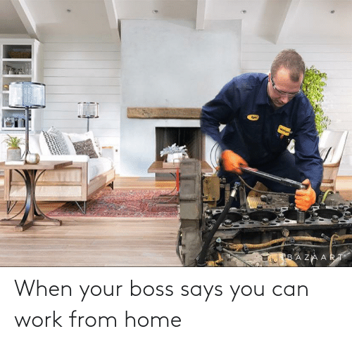 Says You: When your boss says you can work from home