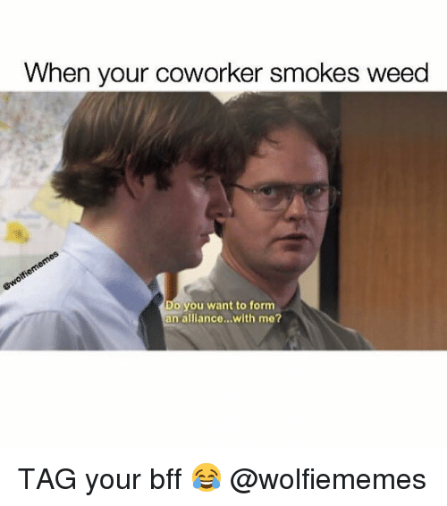 Weed, Marijuana, and You: When your coworker smokes weed  Do you want to form  an alliance...with me? TAG your bff 😂 @wolfiememes