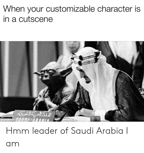 Saudi Arabia, Dank Memes, and Character: When your customizable character is  in a cutscene  made with mematicARIA Hmm leader of Saudi Arabia I am