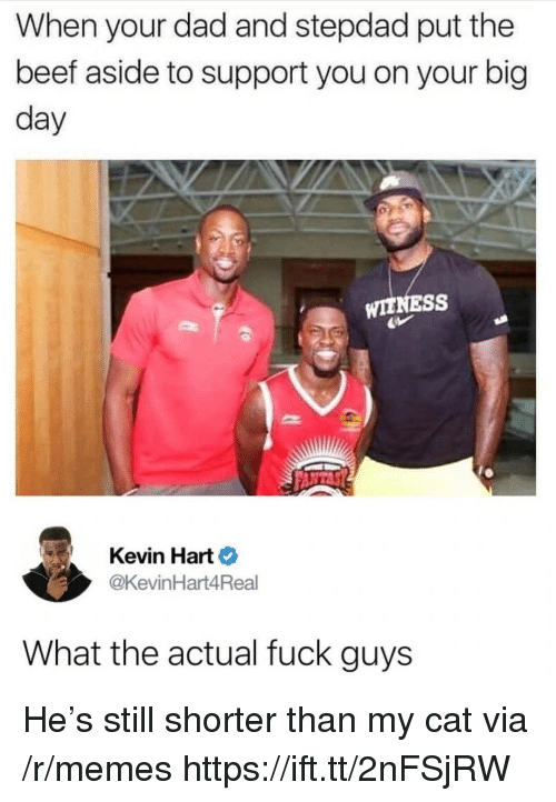 Beef, Dad, and Kevin Hart: When your dad and stepdad put the  beef aside to support you on your big  day  WITNESS  Kevin Hart  @KevinHart4Real  What the actual fuck guys He's still shorter than my cat via /r/memes https://ift.tt/2nFSjRW