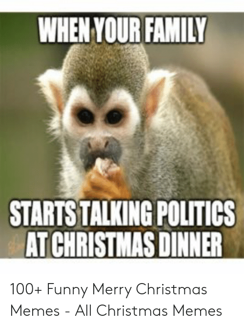 Christmas, Family, and Funny: WHEN YOUR FAMILY  STARTS TALKING POLITICS  AT CHRISTMAS DINNER 100+ Funny Merry Christmas Memes - All Christmas Memes