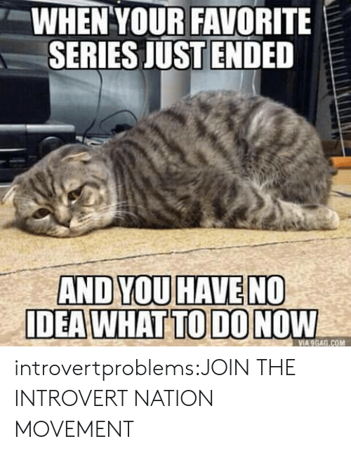 9gag, Introvert, and Tumblr: WHEN YOUR FAVORITE  SERIES JUSTENDED  AND YOU HAVE NO  DEA WHAT TO DO NOW  VIA 9GAG.COM introvertproblems:JOIN THE INTROVERT NATION MOVEMENT