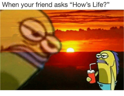 """Life, Asks, and Friend: When your friend asks """"How's Life?"""""""