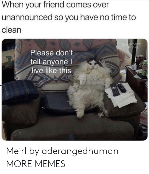 Dank, Memes, and Target: When  your friend comes over  unannounced so you have no time to  clean  Please don't  tell anyone l  live like this Meirl by aderangedhuman MORE MEMES