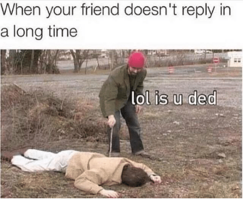 Dedded: When your friend doesn't reply in  a long time  lol is.u ded