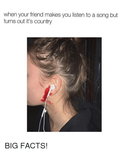 Facts, Memes, and A Song: when your friend makes you listen to a song but  turns out it's country BIG FACTS!