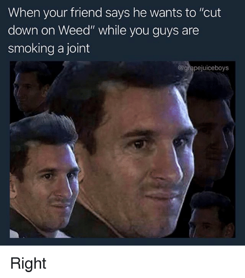 """Smoking, Weed, and Dank Memes: When your friend says he wants to """"cut  down on Weed"""" while you guys are  smoking a joint  @grapejuiceboys Right"""