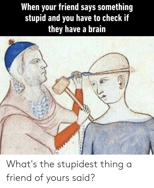 Dank, Brain, and 🤖: When your friend says something  stupid and you have to check if  they have a brain What's the stupidest thing a friend of yours said?