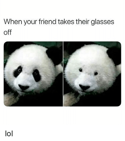 Lol, Glasses, and Girl Memes: When your friend takes their glasses  off lol