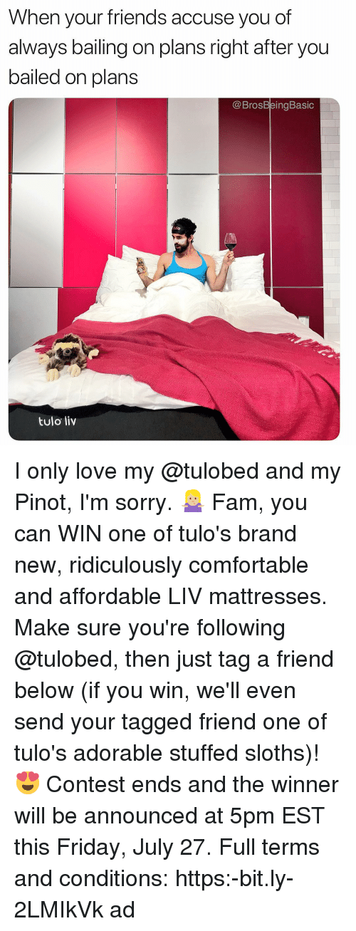Bailed: When your friends accuse you of  always bailing on plans right after you  bailed on plans  @BrosBeingBasic  ulo  tulo liv I only love my @tulobed and my Pinot, I'm sorry. 🤷🏼♀️ Fam, you can WIN one of tulo's brand new, ridiculously comfortable and affordable LIV mattresses. Make sure you're following @tulobed, then just tag a friend below (if you win, we'll even send your tagged friend one of tulo's adorable stuffed sloths)! 😍 Contest ends and the winner will be announced at 5pm EST this Friday, July 27. Full terms and conditions: https:-bit.ly-2LMIkVk ad