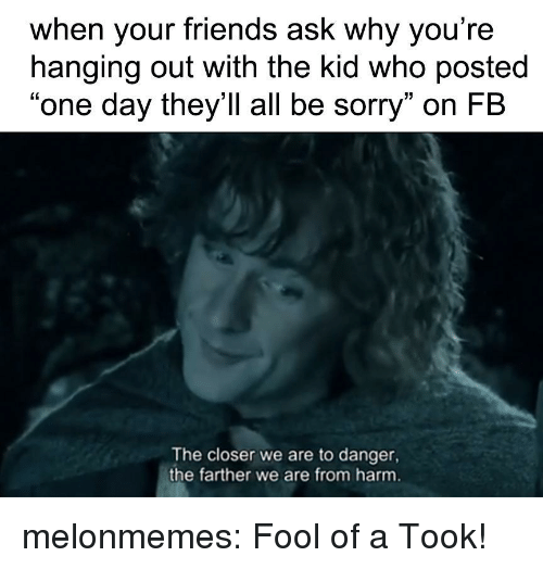 """The Closer: when your friends ask why you're  hanging out with the kid who posted  """"one day they'll all be sorry"""" on FB  The closer we are to danger,  the farther we are from harm melonmemes:  Fool of a Took!"""