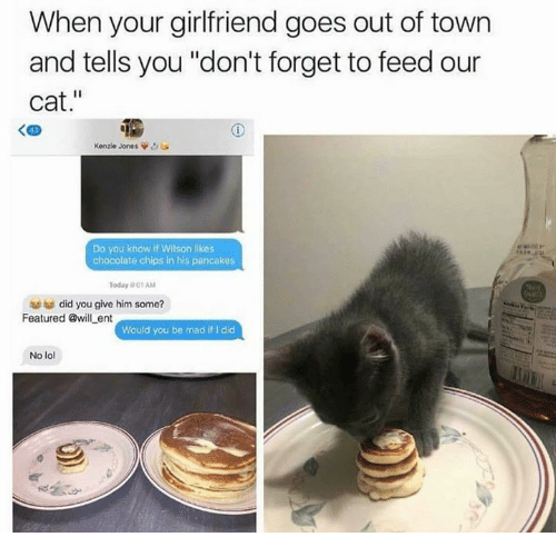 """ents: When your girlfriend goes out of town  and tells you """"don't forget to feed our  cat.""""  く四  Kenzie Jones  Do you know if Wilson likes  chocolate chips in his pancakes  Today 01 AM  did you give him some?  Featured @will ent  Would you be mad if I did  No lol"""