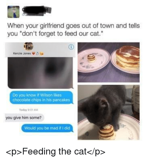 "Chocolate, Today, and Girlfriend: When your girlfriend goes out of town and tells  you ""don't forget to feed our cat.""  Kenzie Jones  Do you know if Wilson likes  chocolate chips in his pancakes  Today 901 AM  you give him some?  Would you be mad if I did <p>Feeding the cat</p>"