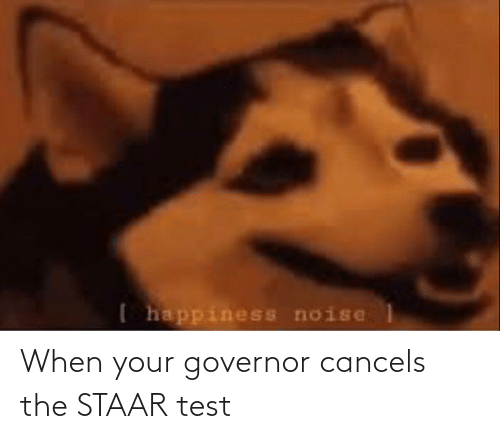 Staar: When your governor cancels the STAAR test